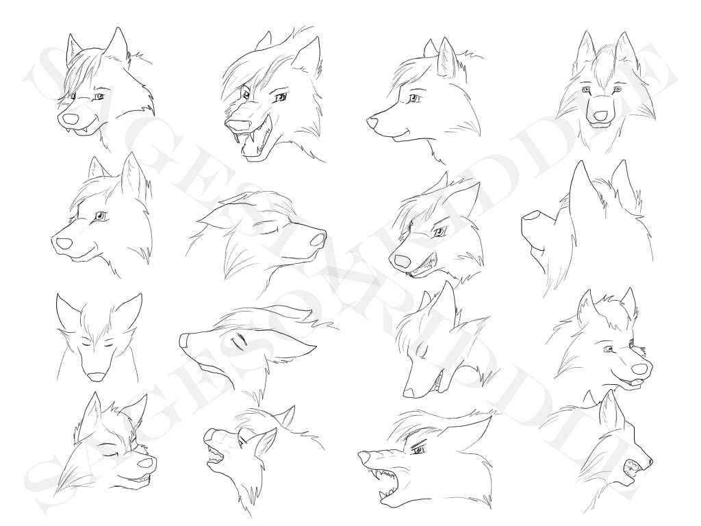 1024x768 Wolf Head Sketches By Sagesinriddle