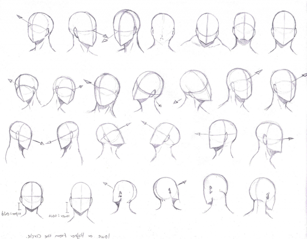 1024x798 Drawing Faces From Different Angles Pictures Drawing Face At Angle