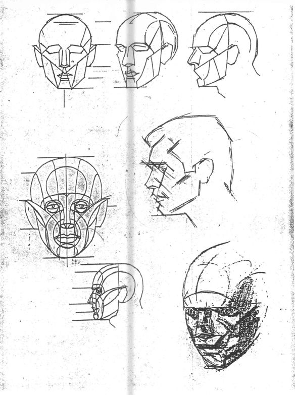 584x783 Anatomical Head Construction Art Anatomy, Drawings