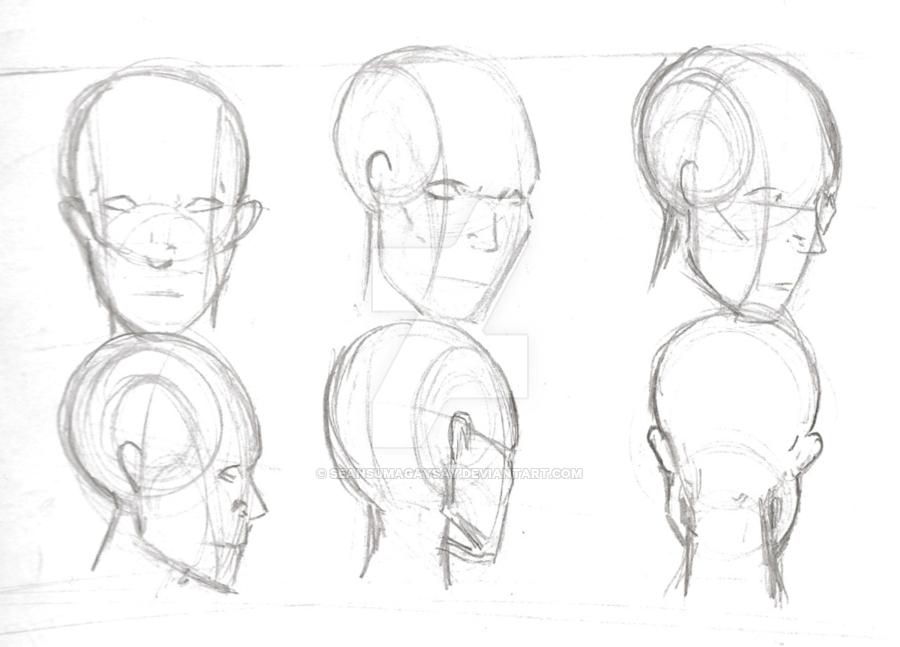 900x647 Human Anatomy Head Study 3 By Seansumagaysay