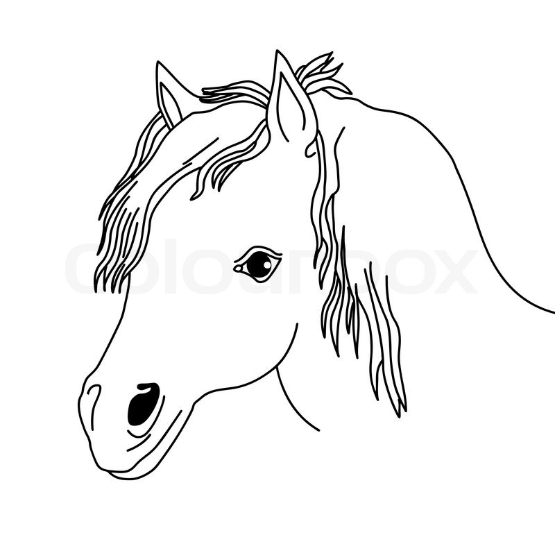800x771 Vector Silhouette Of The Head Horse On White Background Stock