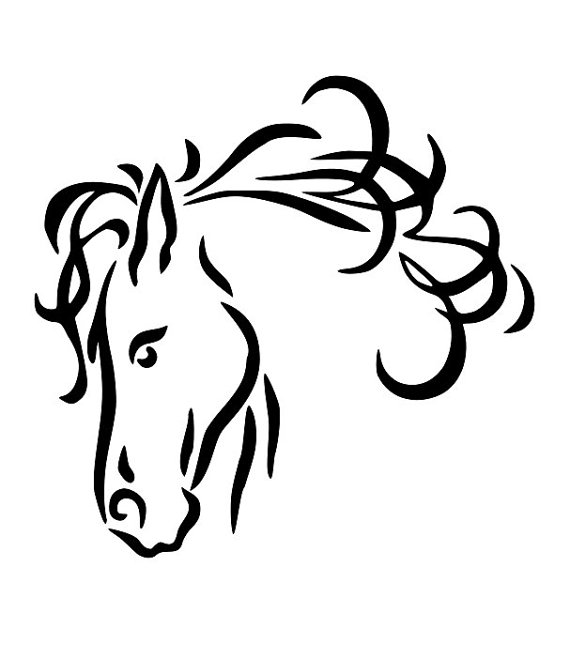 570x659 Horse Line Drawings Clip Art 24 Horse Head Line Drawing Free