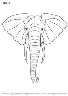 Baby Elephant Drawing Outline Stock Vector Illustration Of