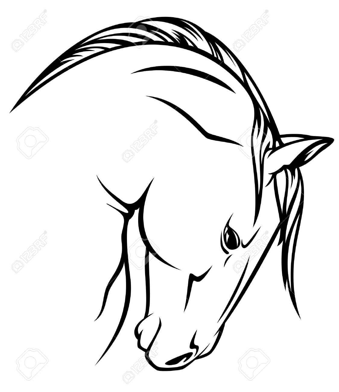 1124x1300 Horse Profile Vector Outline