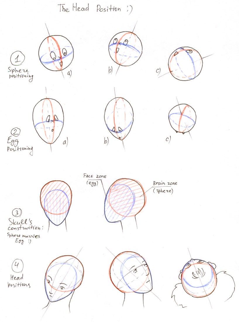 817x1100 How To Draw Head By On @
