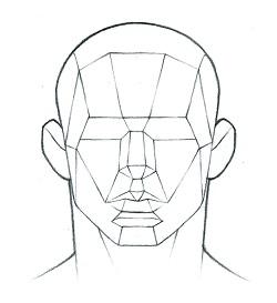 250x273 Portrait Fundamentals Made Simple My Drawing Tutorials
