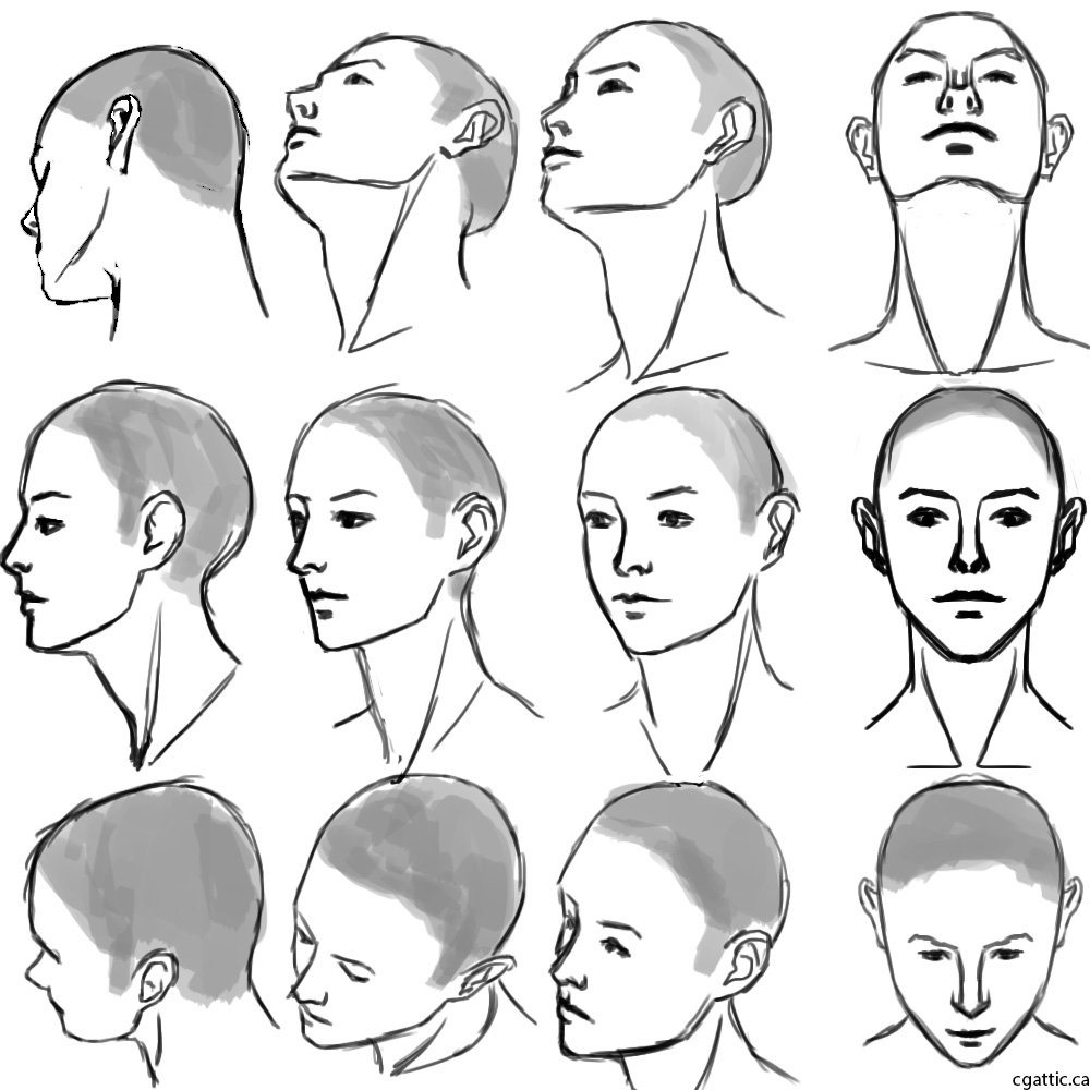 1000x1000 Realistic Head Drawings In 4 Steps With Photoshop