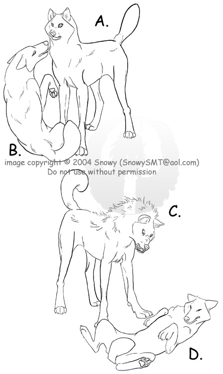 447x750 Wolf Positions By Snowysmt