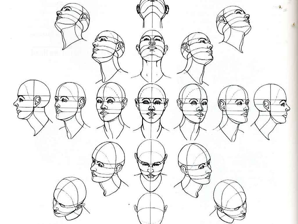 1024x768 Number Of Head Drawing Tutorials. Useful For When Learning To Draw