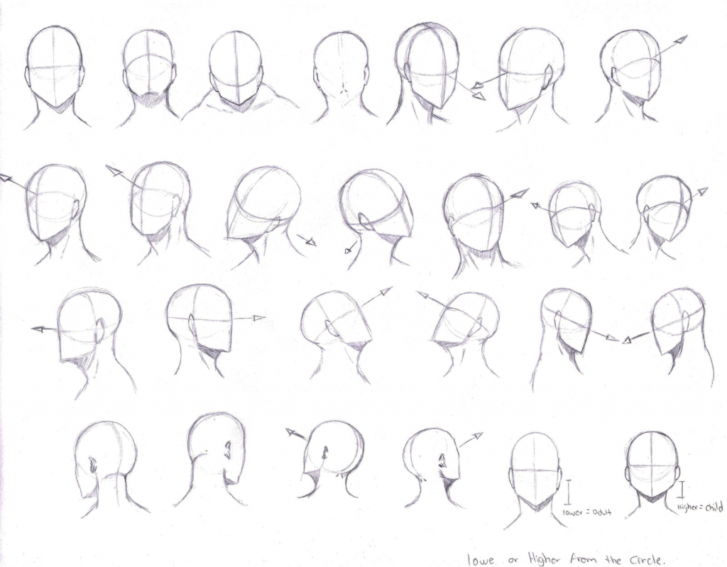 1024x799 Drawing Anime Head Drawing Anime Head How To Draw Manga Head Shape