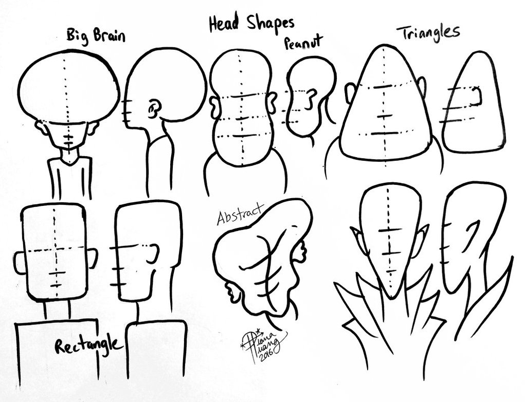 1021x783 Draw Different Head Shapes By Diana Huang