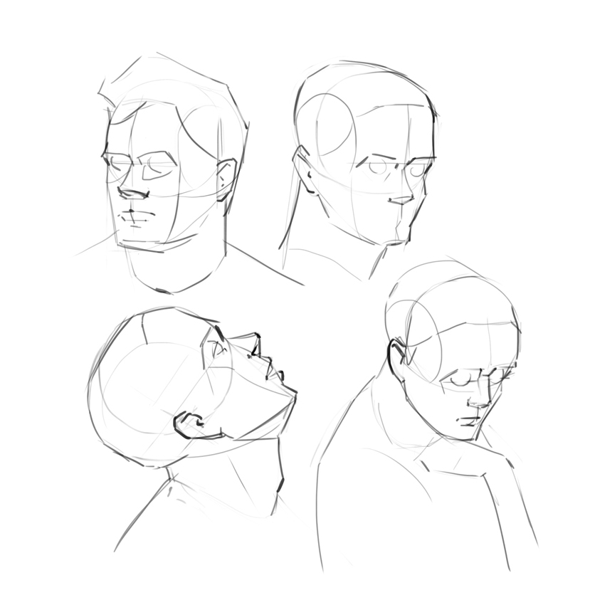 829x829 Head Structure And Face Planes By Chuchuan