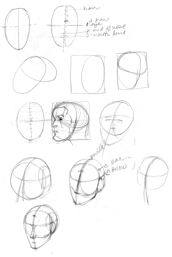 569x850 Learning To Draw Heads Practice And Study With Skulls And Loomis
