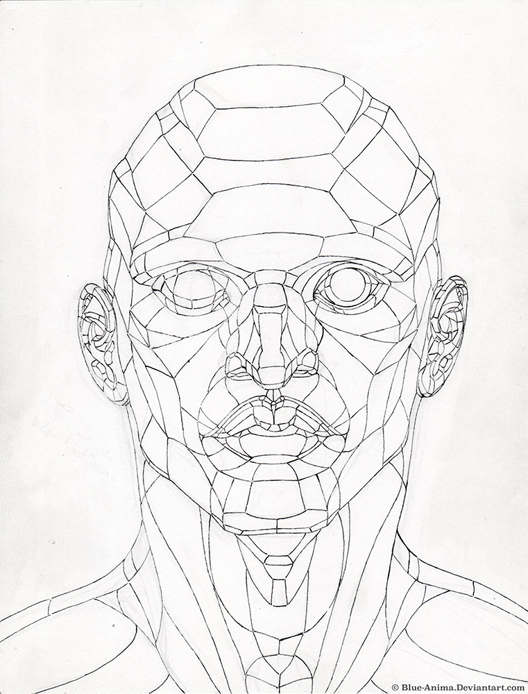 761x1000 Planes Of The Head Study By Blue Anima