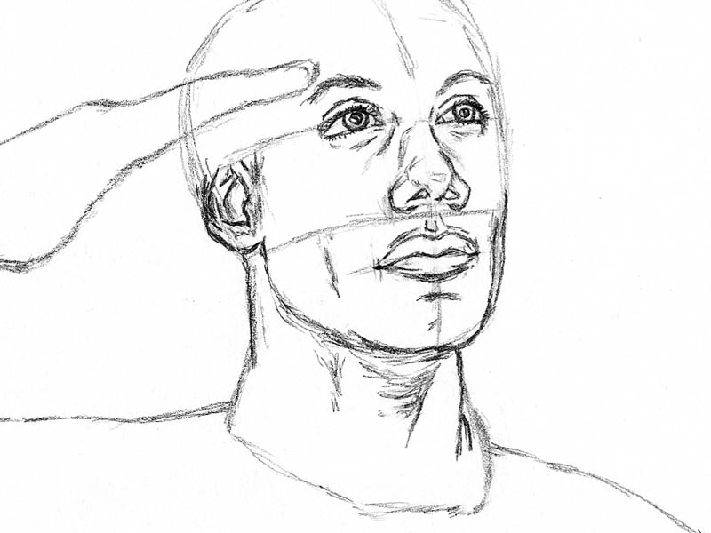This is a picture of Rare Head Tilted Back Drawing