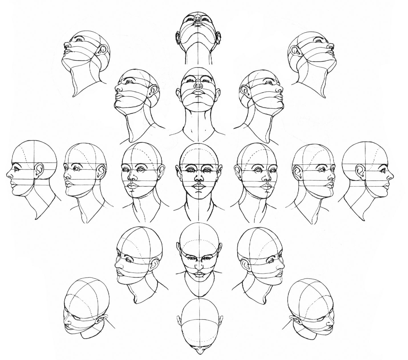 1431x1261 Image Result For Head Tilted Down Art Reference