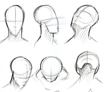 360x307 Pictures Head Looking Up Drawing,