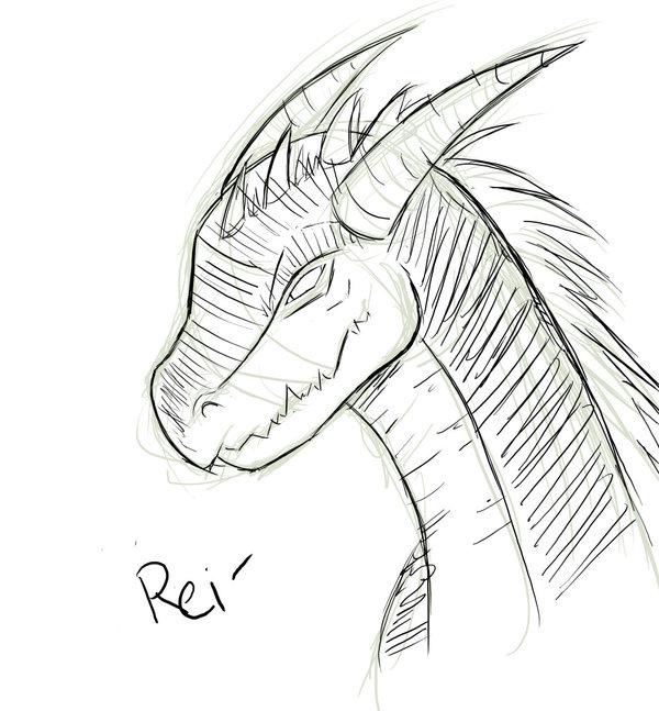 600x647 Sketch Dragon Head By Saoshi Kun