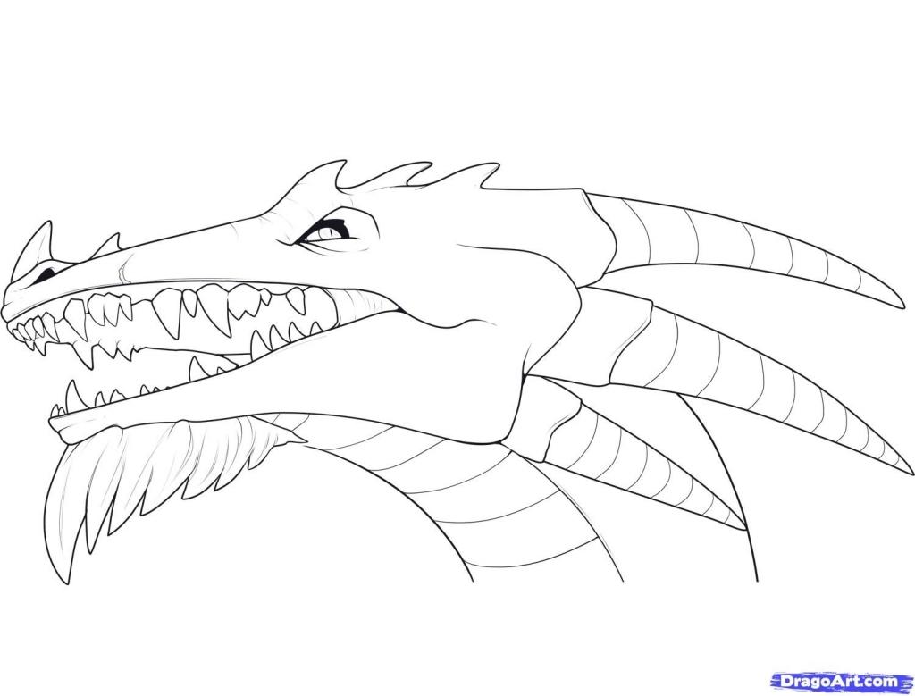 1024x779 Dragon Head Drawing How To Draw Dragon Heads Step Step Dragons