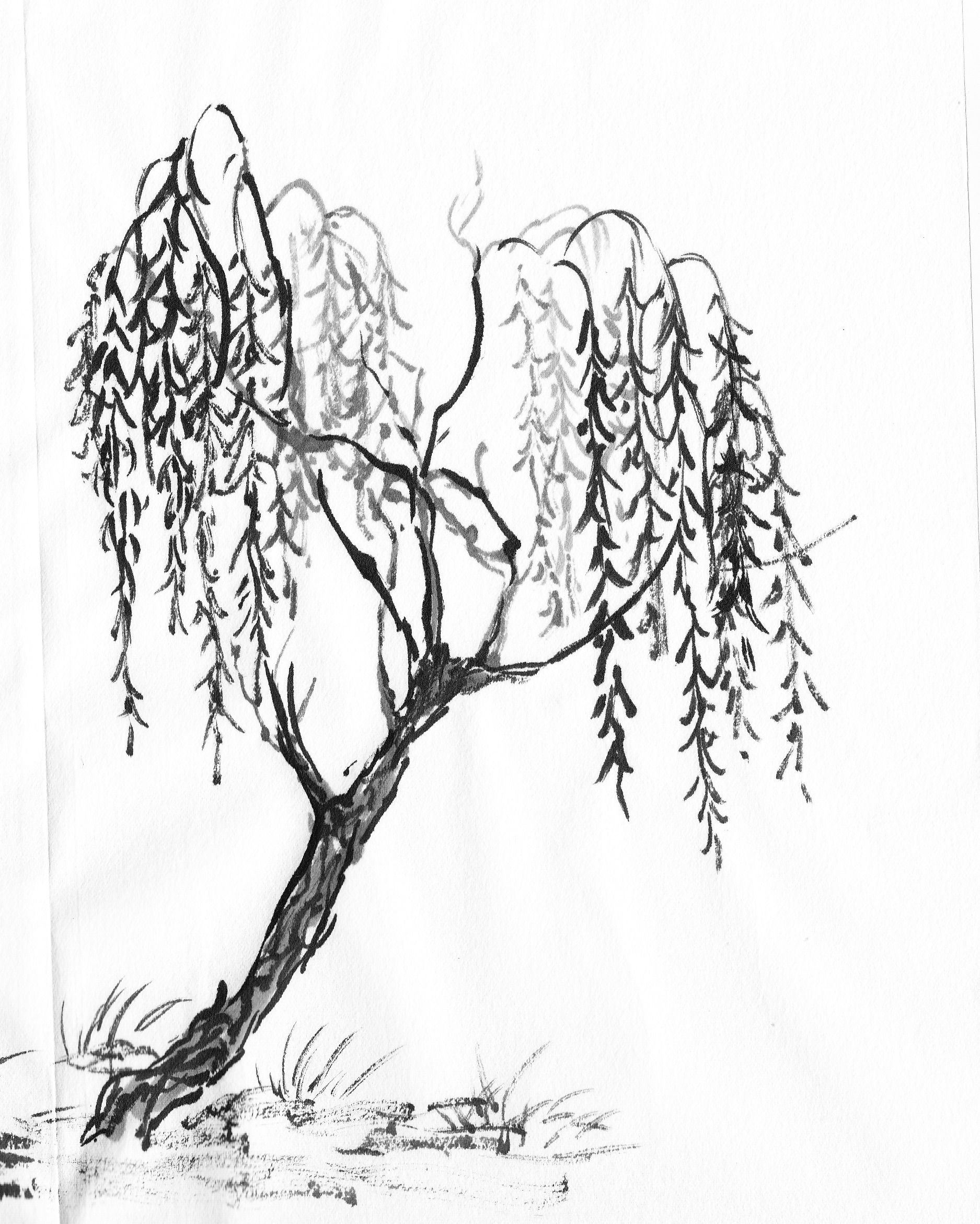 1875x2342 Specific Trees Painting Willow Willow Tree, Tattoo And Tatting