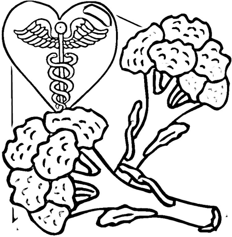 470x480 Broccoli Is Healthy Food Coloring Page Free Printable Coloring Pages