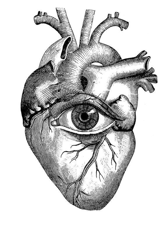 564x812 Illustration By Paula Braconnot Source Httpwww.paulabraconnot