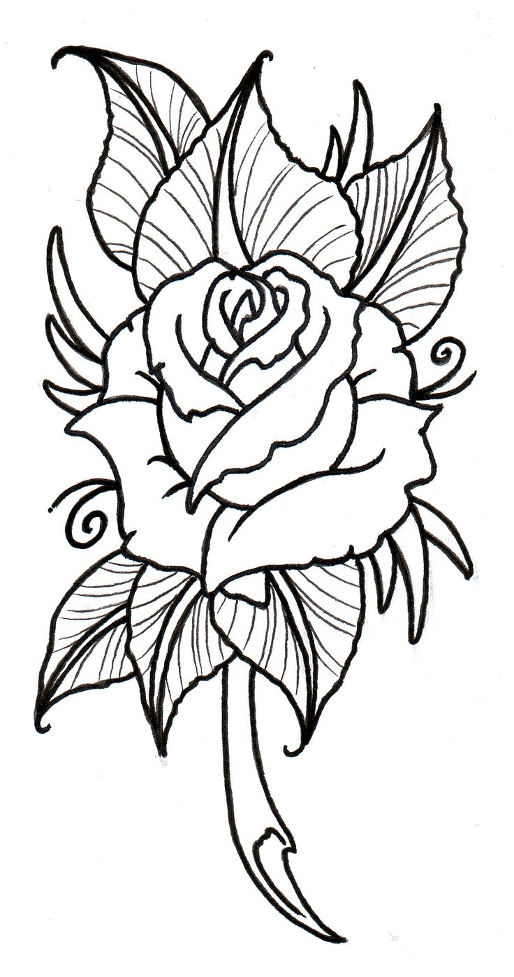 736x1397 Tattoo Design Drawings Heart Designs To Rose Drawing Outline