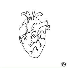 Heart Drawing Real