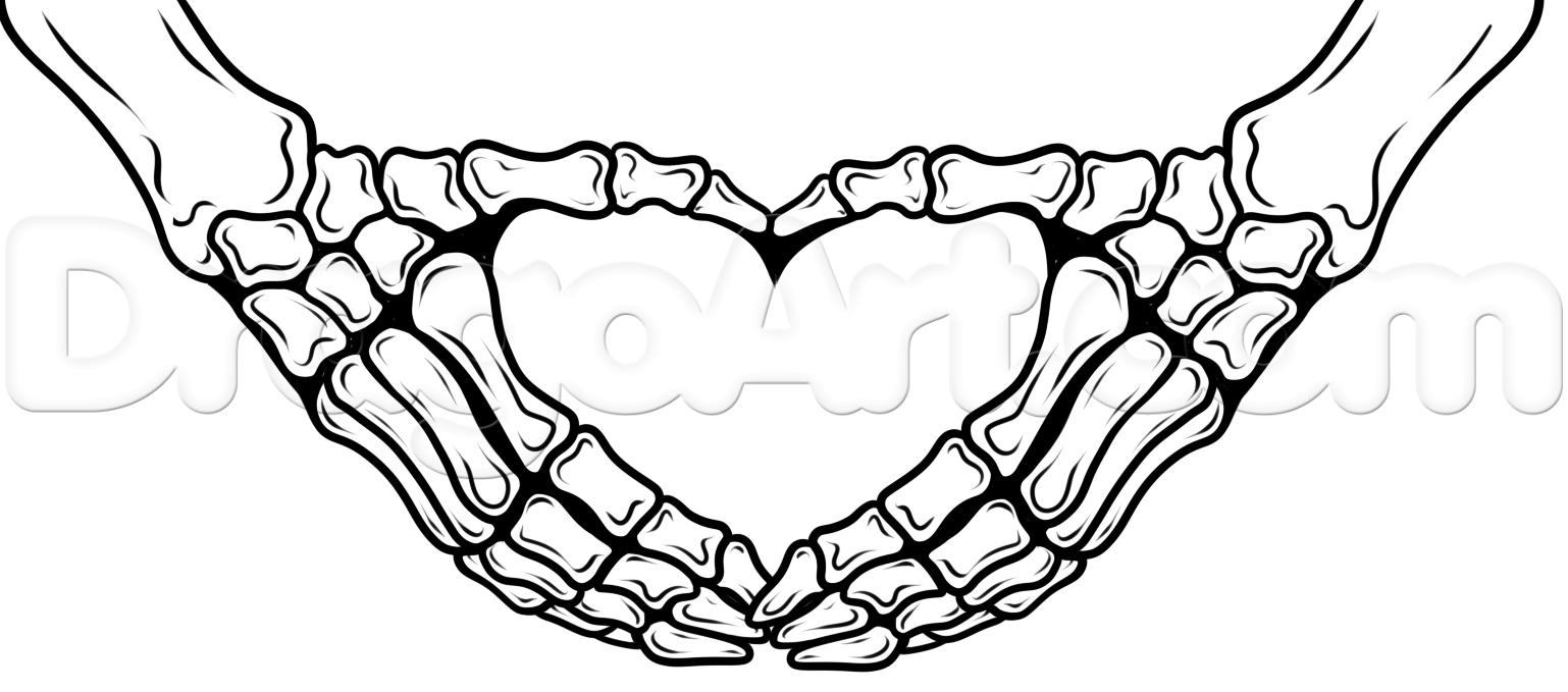 1538x679 Skeleton Heart Hands Drawing Tutorial Step By People Skeleton Adult