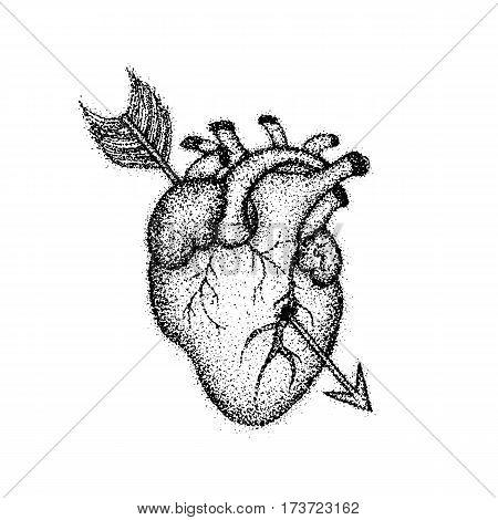 450x470 Dotwork Heart Arrow. Vector Vector Amp Photo Bigstock