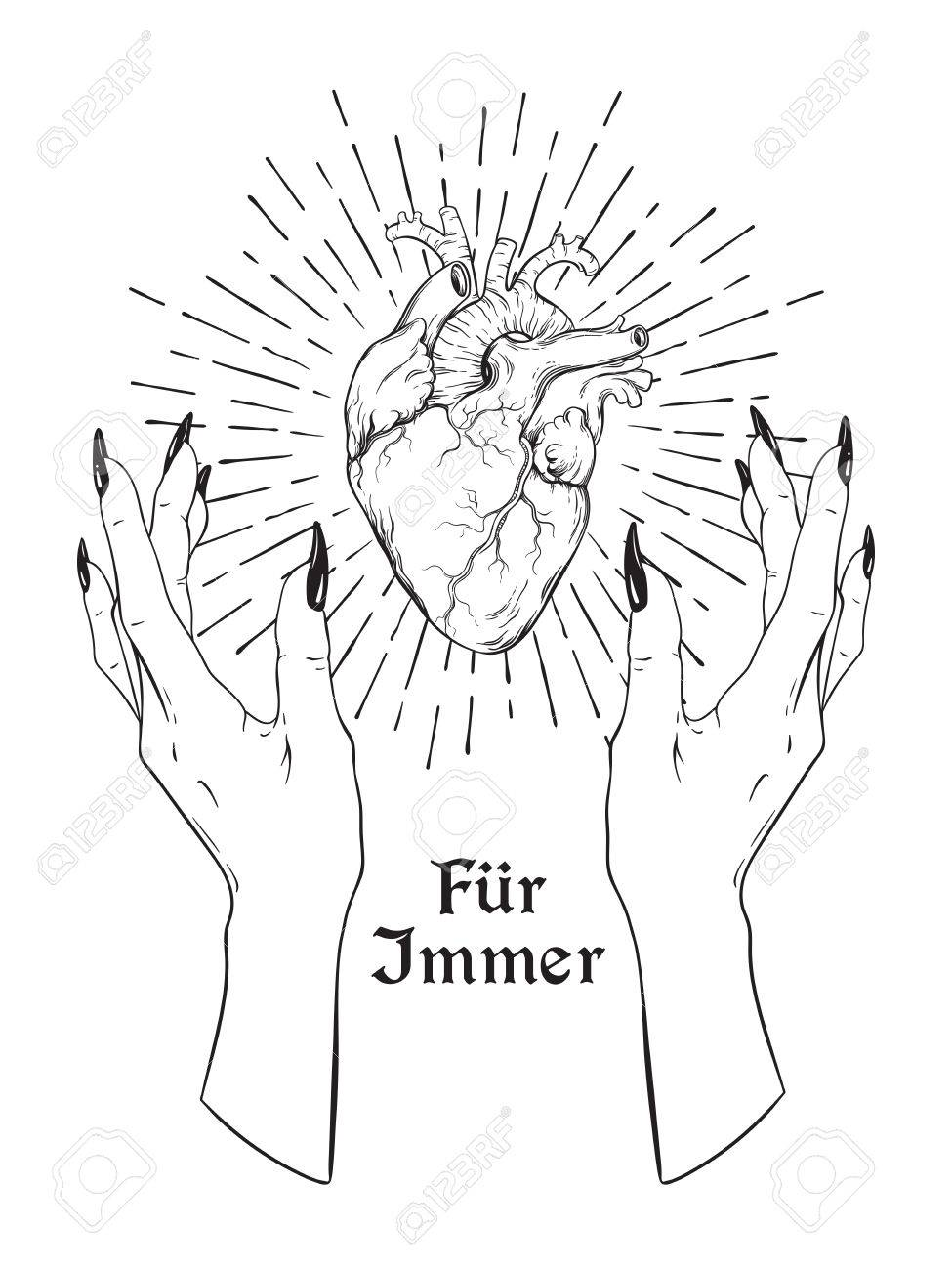 975x1300 Human Heart In Graceful Female Hands Isolated. Sticker, Print