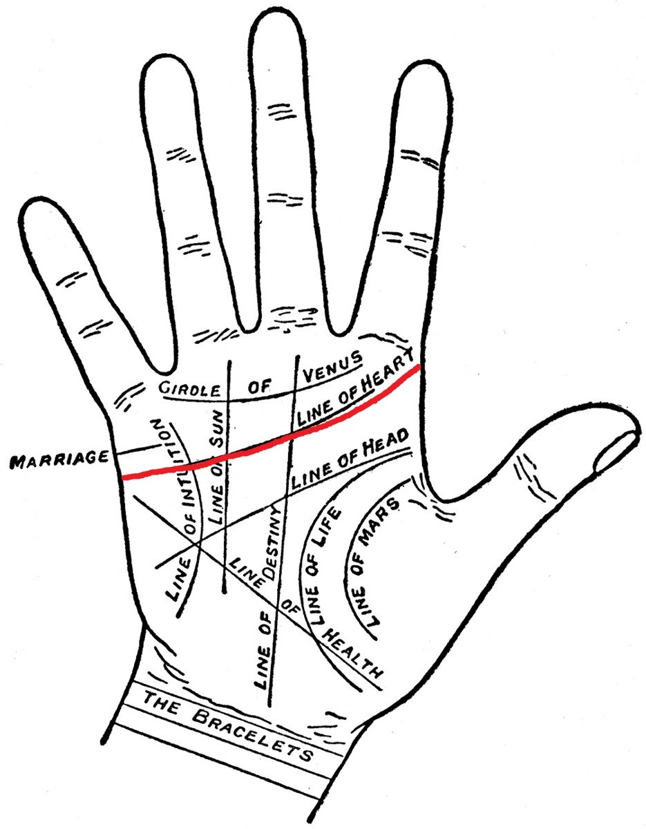 935x1200 A Simple Guide To Reading Palms