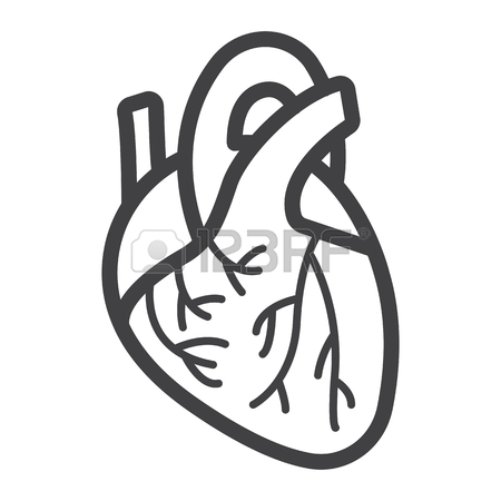 450x450 Human Heart Flat Icon, Medicine And Healthcare, Human Organ Sign