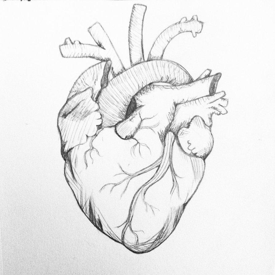 894x894 Heart