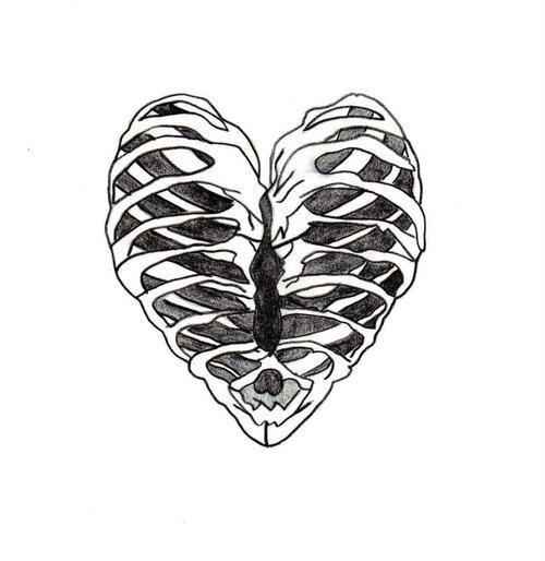500x514 Love Drawing Heart Sketch Skeleton Bones Ribs Ribcage Organ