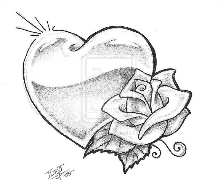736x624 Collection Of Heart Rose Outline Tattoo Design