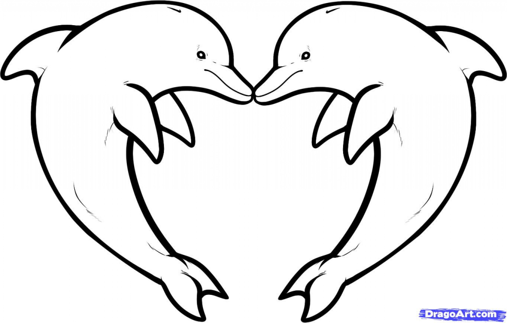 1024x654 Dolphin Outline Drawing Dolphin Heart Clipart Clipart Kid