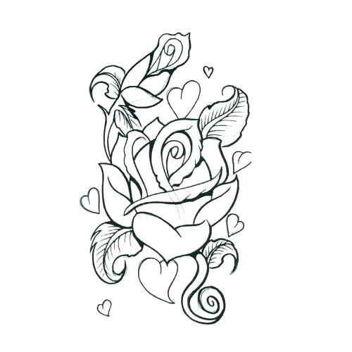 500x500 Rose Outlines