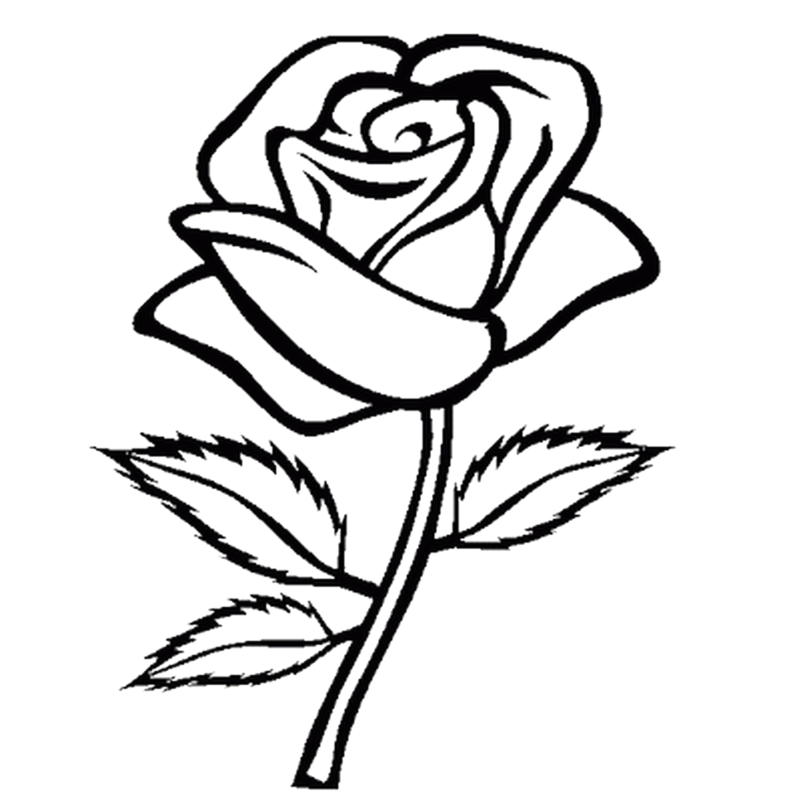 2550x2602 Rose Heart And Ribbon Coloring Pages For Valentinejpg On Of Roses