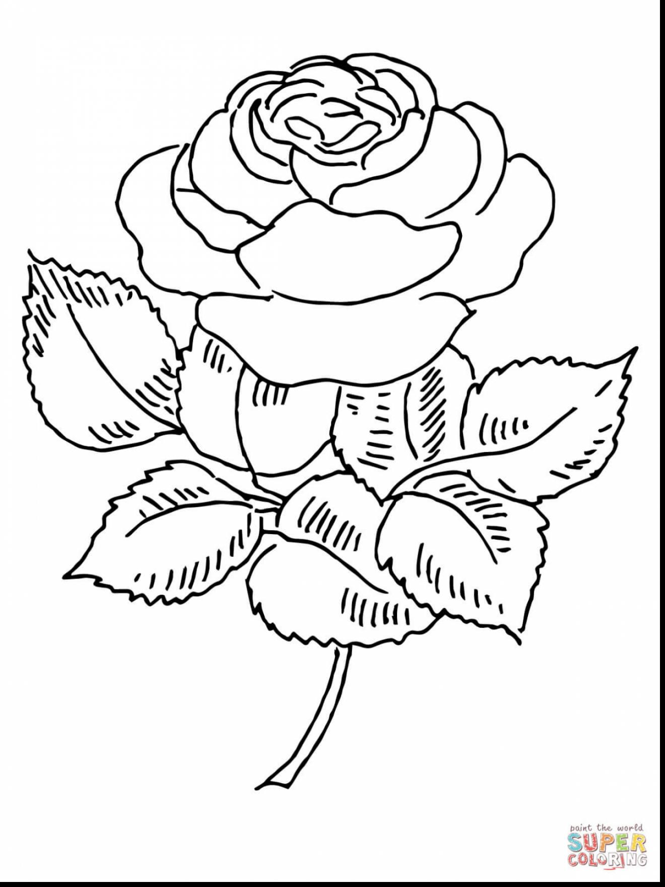 1320x1760 Remarkable Rose Drawing Coloring Page With Rose Coloring Pages