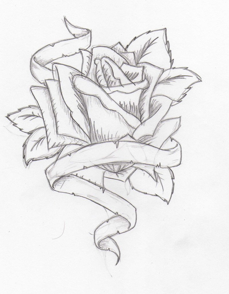 800x1026 Drawn Hearts Ribbon