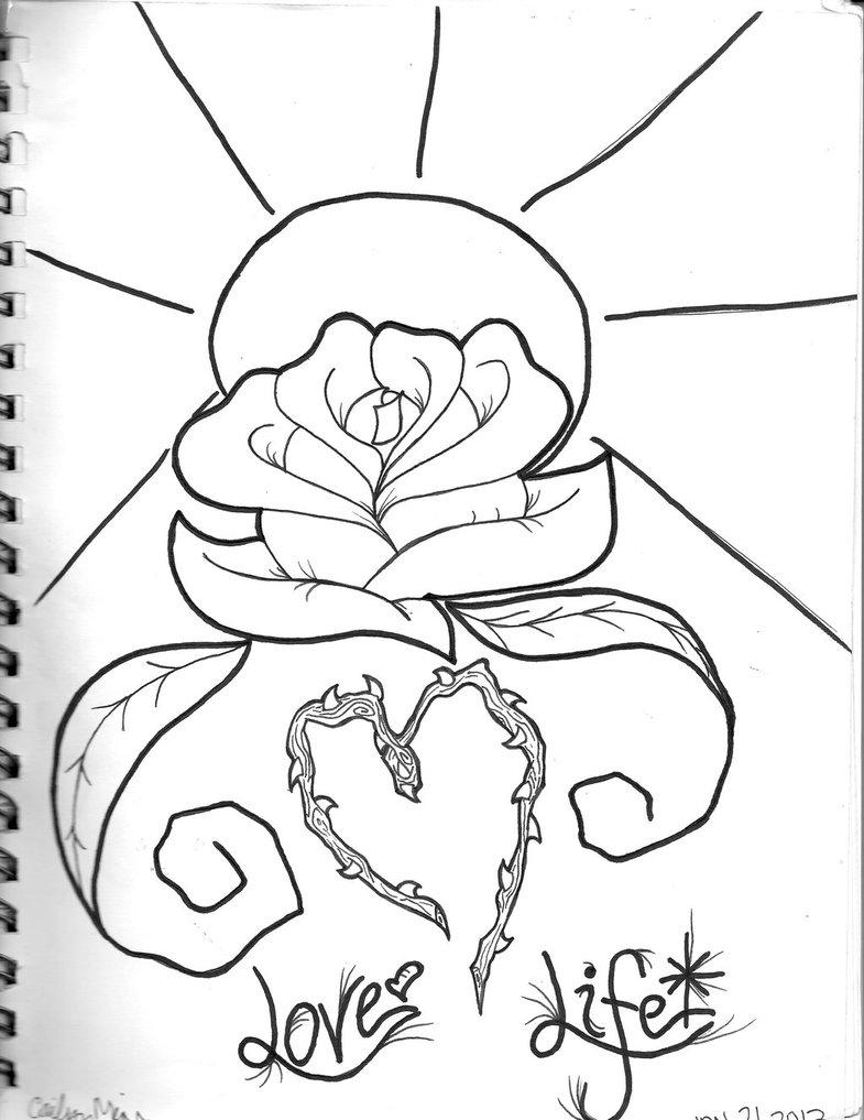 785x1017 Holy Rose