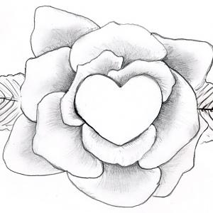 300x300 Gallery Easy Pencil Drawings Of Roses And Hearts,