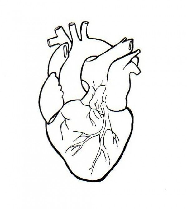 600x672 Heart Embroidery Patterns Embroidery, Patterns And Stitch