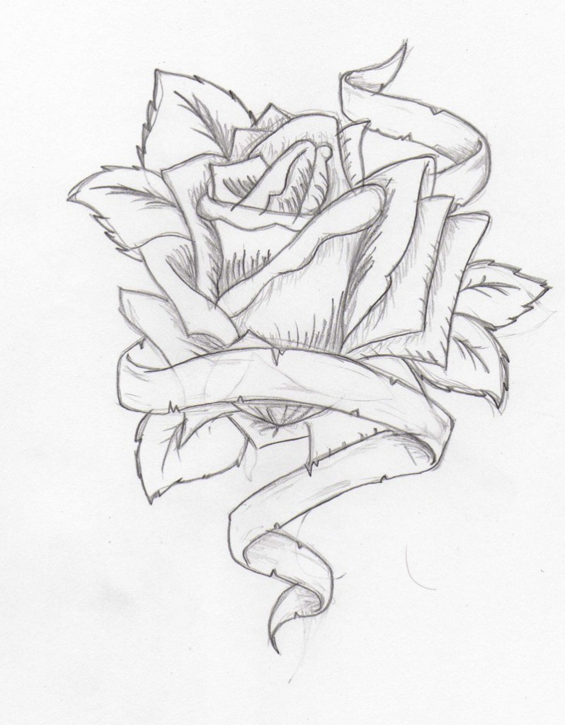 798x1024 Pencil Drawings Of Flowers And Hearts Pencil Drawings Of Flowers