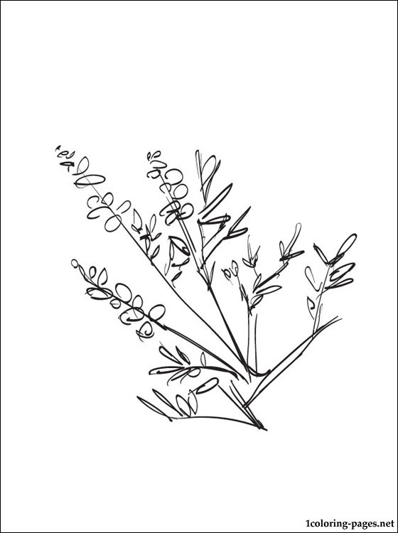560x750 Heather Coloring Page For Free Coloring Pages