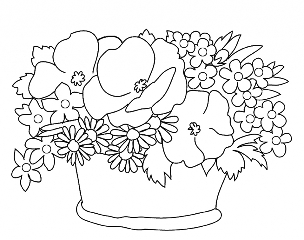 1024x810 Pencil Drawing Of Flower Basket Heather Flower Drawing