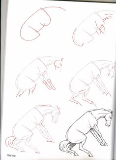 236x324 How To Draw Horses