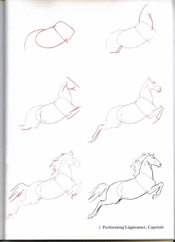 610x840 How To Draw Horses