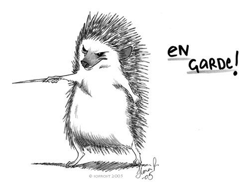 500x366 Image Result For Drawing Of Hedgehogs Fighting How To Hedgehog